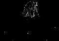 Fotografia Reklamowa – Bartek Wierzbicki - Logo